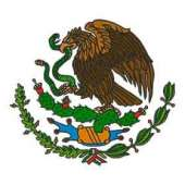 embroidery shield of México flag