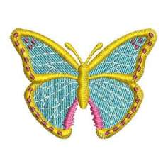 Colorful butterfly -