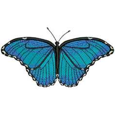 Blue butterfly - Matrices para bordados